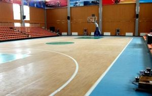 Indoor PVC Sports Floor /Basketball Floor/Mat Fiba Certificate Wooden Surface pictures & photos