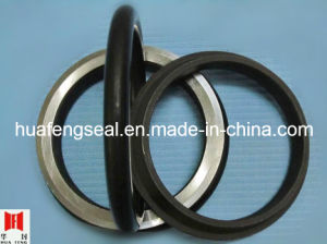 Manufacturing Seals Geotze pictures & photos