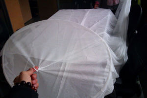 Dome Mosquito Net pictures & photos