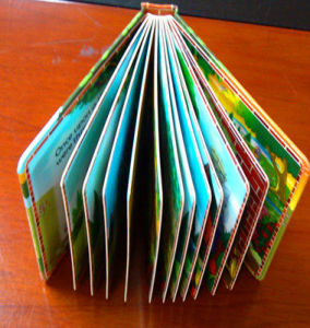 Make 3D Printing Book for Student pictures & photos