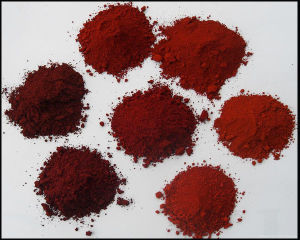 Factory Supply Pigment Red Iron Oxide pictures & photos