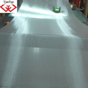 Stainless Steel Wire Mesh (TYC-0003) pictures & photos