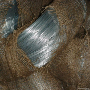 Tianyue Electro Bright Soft Galvanized Iron Wire (TYE-12) pictures & photos