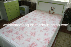 Pure Printing Cotton Blanket (NMQ-CB-007) pictures & photos