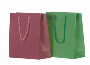 String Handle Bag, Plastic Bag with High Quality, Plastic Printed Bag (04) pictures & photos