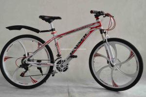 MTB Bike (WT-26404)