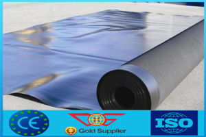 Smooth Surface HDPE Geogmembrane, (Max 3mm Thickness, . Gm13 Standard) (Dageng)