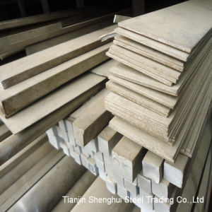 Professional Manufacturer Stainless Steel Flat Bar (SUS317) pictures & photos