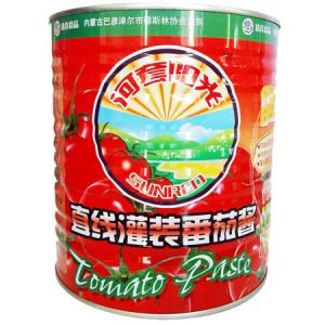 High Quality Canned Tomato Paste 18/20% 22/24% 28/30%