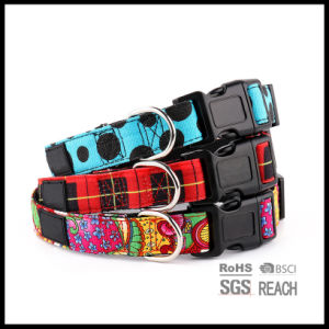 DOT Pattern Canvas Pet Dog Collar for Us Market pictures & photos