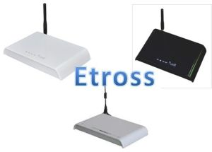 LCR Low Call Routing GSM to PSTN FWT Terminal Compatible to PBX System&VoIP Gateway With IMEI Change (Etross-8848) pictures & photos