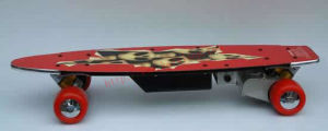 Remote Control Skateboard / Electric Skateboard (RC24V-250A)