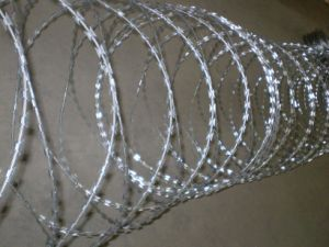 High Quality Galvanized Razor Barbed Wire pictures & photos