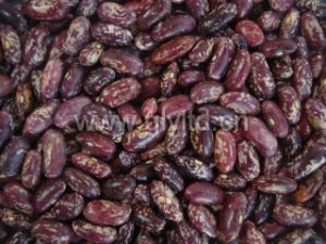 Chinese Purple Speckled Kidney Bean in Good Quality pictures & photos