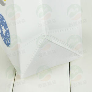 Auto-Formed 3D Recycable Non-Woven Bag (MY-042) pictures & photos