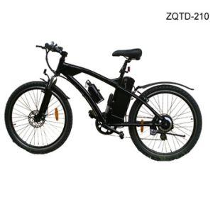 Electric Bike (TY-210)