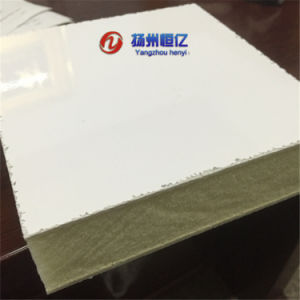 FRP PU Insulation Panel for Cold Room pictures & photos