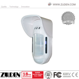 Outdoor Dual PIR Microwave Motion Detector pictures & photos