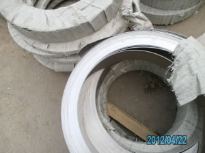 High Quality Stainless Steel Strip