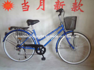 Indonisia Model Blue Lady Bike with V Brake (SH-CB035) pictures & photos