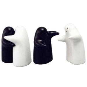 Embrace The Modelling Porcelain Salt Pepper Condiment Cruet Set pictures & photos