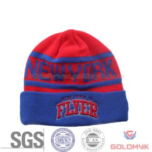 Acrylic Beanie Hat with Logo Embroidery and Jacquard (GKA0401-A00036) pictures & photos