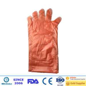 Disposable LDPE/HDPE Long Sleeve Gloves pictures & photos