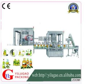 Ylg-Gz10013cyautomatic Rotary Weighing Filling Production Line pictures & photos