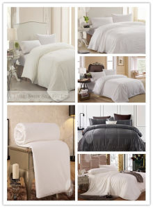 King Size Silk Quilt with Cotton Fabric Cover for Home pictures & photos