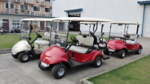 4 Wheel Electric Golf Car Wholesale with EEC Approved pictures & photos