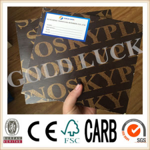 Qingdao Gold Luck Film Faced Plywood Shimizu Template pictures & photos