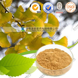Manufacturer Ginkgo Biloba Extract Powder Ginkgo Flavone Bulk Price pictures & photos