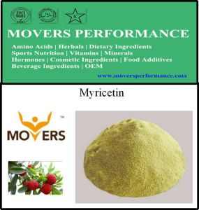 Supply High Quality Natural Extract Myricetin 98% pictures & photos