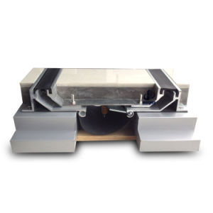 High Quality Aluminum Floor Expansion Joint Cover (MSDSZJ) pictures & photos