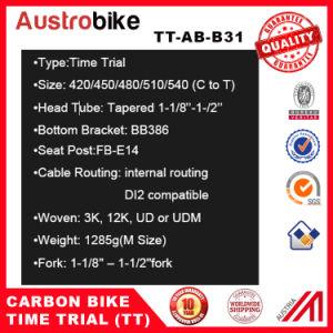 OEM Tt Bicycle Frame, Time Trial Bike Frameset, Chinese Tt Bike Frame pictures & photos