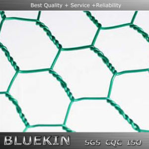 High Quality Hexagonal Wire Netting with Factory Price pictures & photos