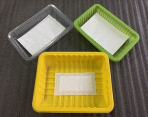 Customizable High Quality Transparent PP Plastic Fruit Container for Food Packaging pictures & photos