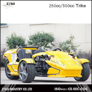 300cc Ztr Trike for Adult Tricycle 24HP Trike Roadster 3 Wheel Car for Sale pictures & photos