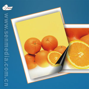 SGS Audited Magnetic Photo Paper (Gloss and Matt) pictures & photos