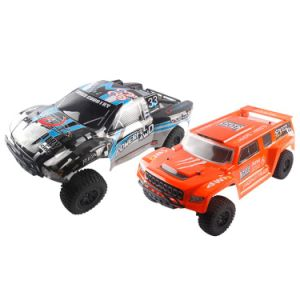 312939k-1 / 10 4-Wheel Drive 2.4GHz Remote Control Car pictures & photos