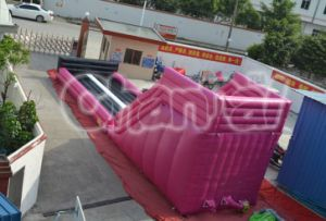 Inflatable Zorb Ball Slide Zorb Ramp (chsp111) pictures & photos