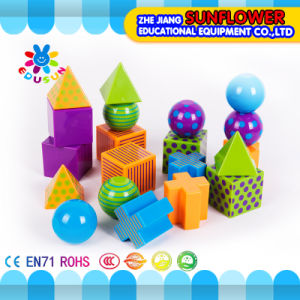 Geometrical Model (Educational equipment) , Children Educational Toys pictures & photos