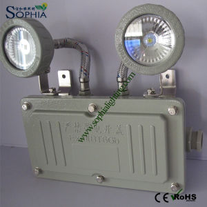 Explosive Proof LED Emergency Light, Explosive Proof Emergency LED Lamp pictures & photos