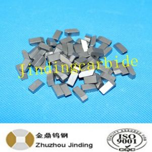 Tungste Carbide Saw Tips for Sawblade Cutting in High Hardness pictures & photos
