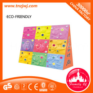 Colorful Climbing Holders Animal Shape Climbing Wall pictures & photos