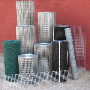 Zinc and PVC Coated Welded Wire Mesh Roll for Sale pictures & photos