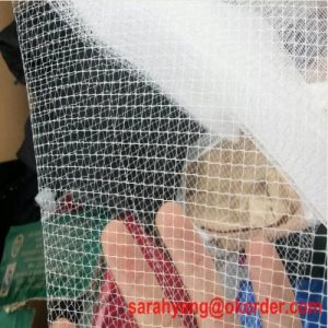 Deer Fence/Plastic Deer Net/High Quality Deer Fence pictures & photos