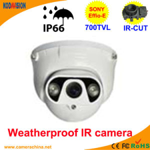 50m LED Array Sony 700tvl Dome CCTV Camera Security Systems pictures & photos