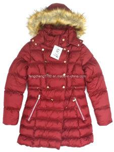 Women′s Fashion Winter Coat/Jacket with Detachabel Fur Hood