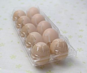 Wholesale Hot Sale Plastic Egg Tray Manufacturer pictures & photos